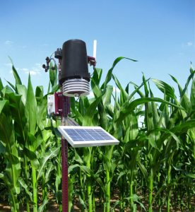 IntelliFarms' FieldDataManager System is a network of solar powered soil probes and weather stations that covers a 2-mile radius. FieldDataManager and BinManager can be accessed and controlled anywhere in the world with an internet connection
